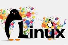 Linux Network Administration (LPIC-3)