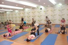 Yoga Cho Mọi Người