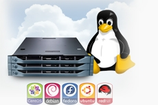 Mastering Web Server Linux