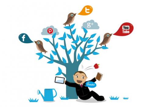 Tối ưu hóa truyền thông xã hội và SEO nhằm tăng doanh thu